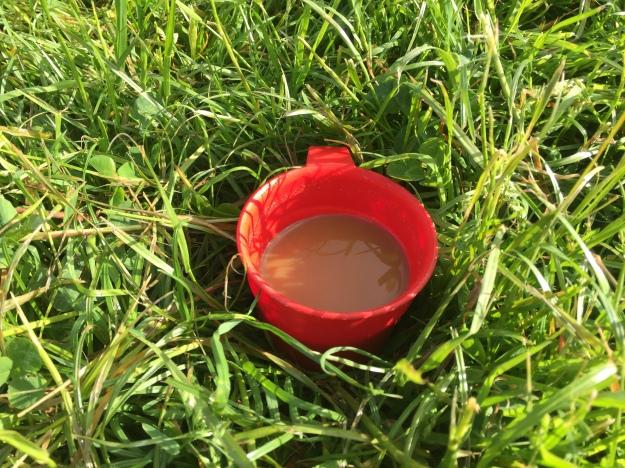 Anna paxton breakfast